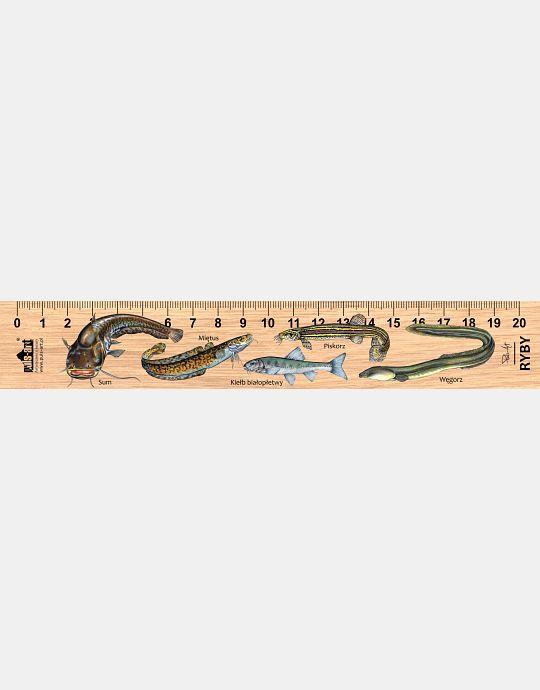 LESs-58 - Ryby (linijka drewniana)