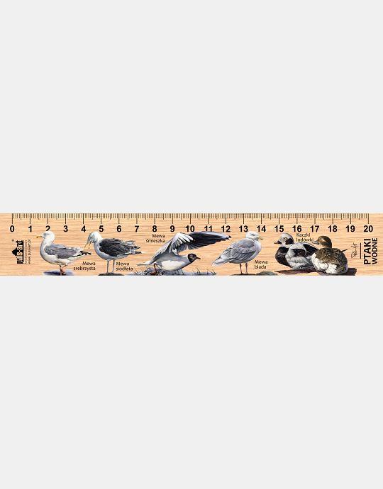 LESs-62 - Ptaki wodne (linijka drewniana)
