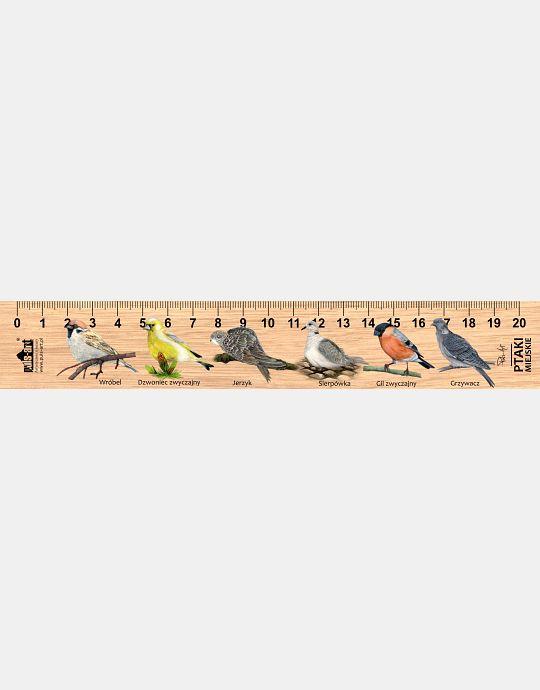 LESs-66 - Ptaki miejskie (linijka drewniana)