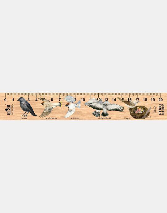LESs-67 - Ptaki miejskie 2 (linijka drewniana)