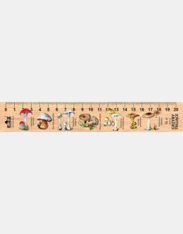 LESs-8 - grzyby trujace (linijka drewniana)