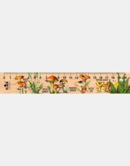 LESs-85 - Grzyby jadalne 2 (linijka drewniana)