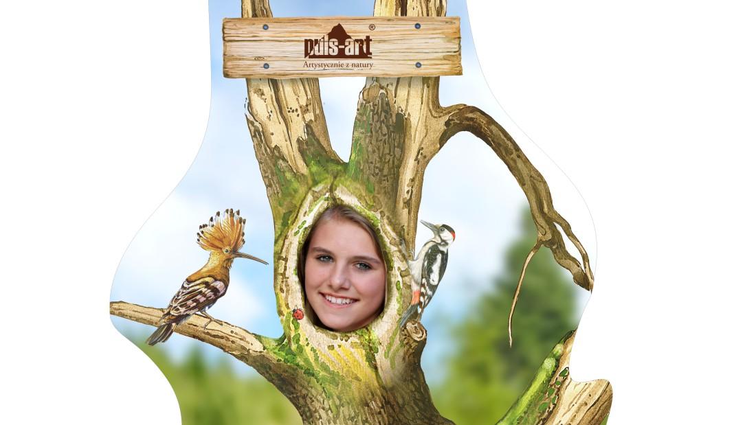 Fotościanka - Leśne drzewo