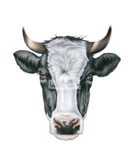 Maska - Krowa