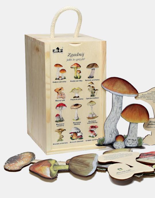 Zgadnij jaki to grzyb - zestaw edukacyjny przyrodniczy