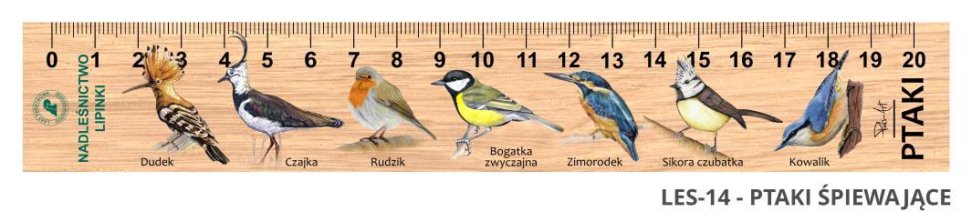 LES-14 - ptaki spiewajace (linijka drewniana)