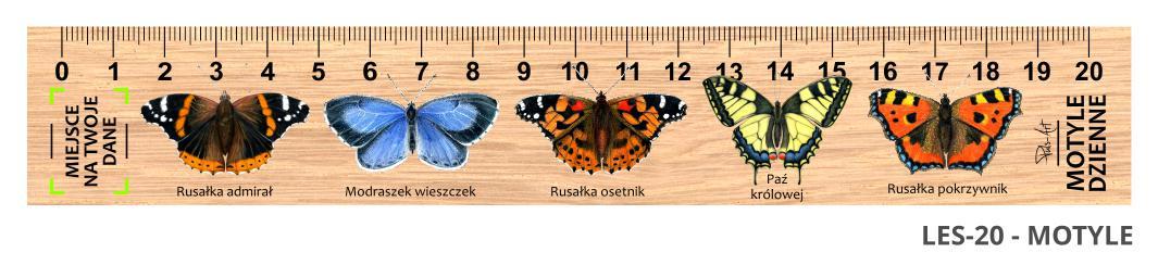 LES-20 - motyle (linijki drewniane)