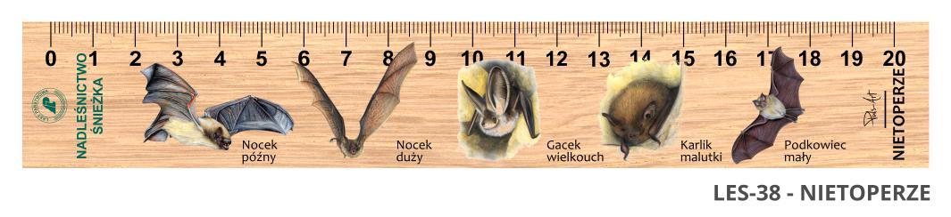 LES-38 - Nietoperze (linijka drewniana)