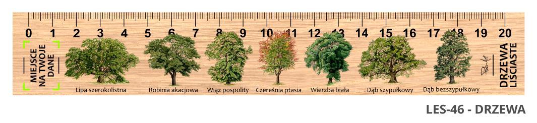 LES-46 - Drzewa (linijki drewniane)