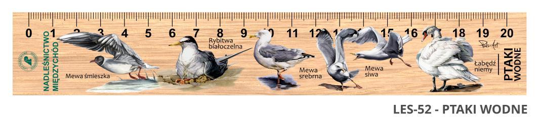 LES-52 - ptaki wodne (linijki drewniane)
