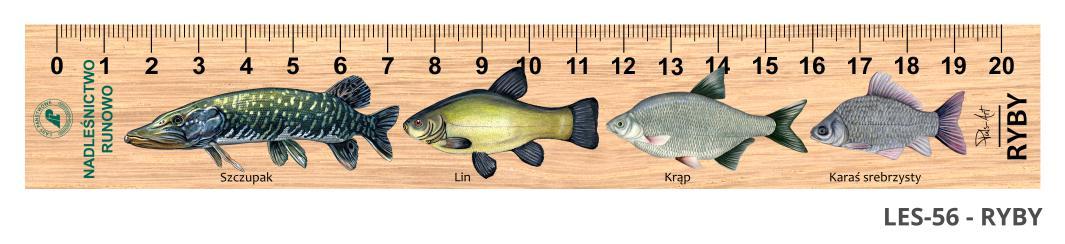 LES-56 - Ryby (linijka drewniana)