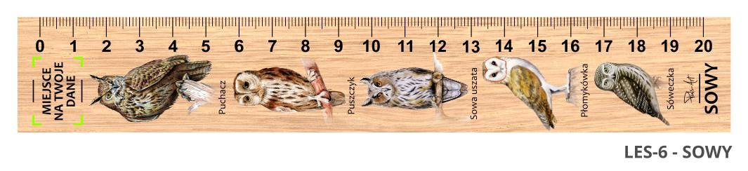 LES-6 - sowy (linijki drewniane)