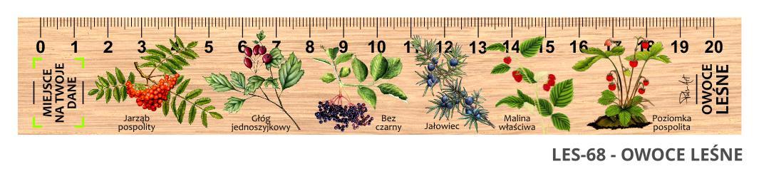 LES-68 - Owoce lesne (linijka drewniana)